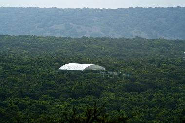 Ecosystème forestier méditerranéen